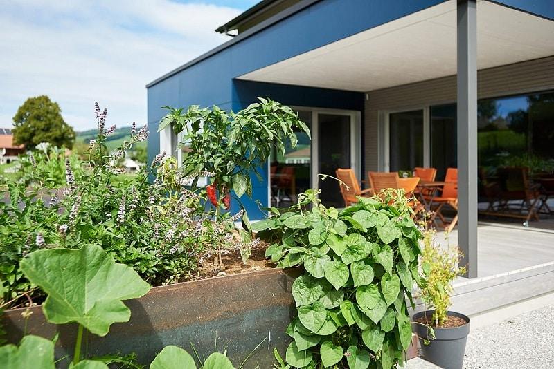 L'écologie et de la biodiversité à la maison comme au jardin